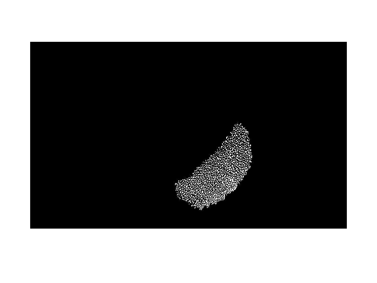 images_2016_jb/20160128_60_result.jpg